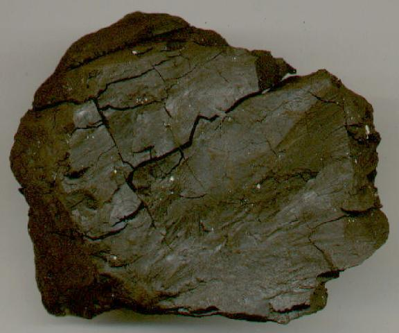 Sedimentary Rock Identification Sample 12
